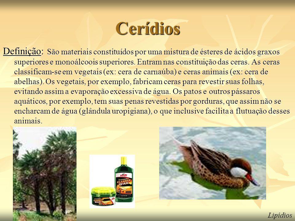 Cerídios
