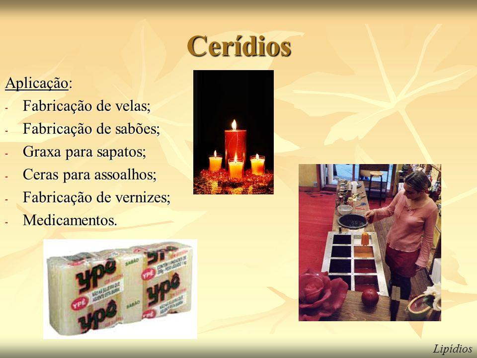 Cerídios Aplicação: Fabricação de velas; Fabricação de sabões;