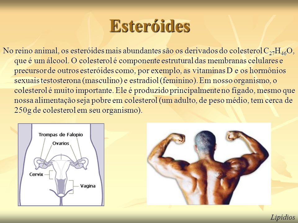 Esteróides