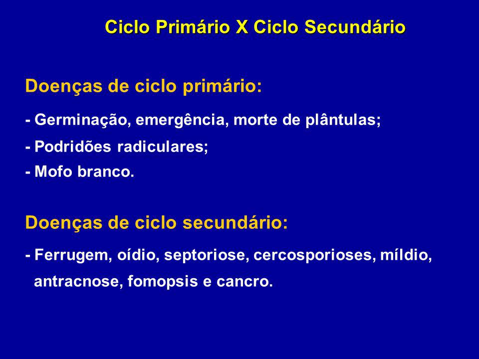 Ciclo Primário X Ciclo Secundário