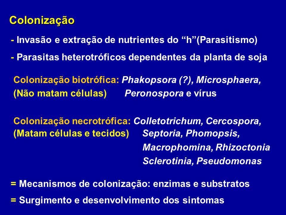 Colonização - Invasão e extração de nutrientes do h (Parasitismo)