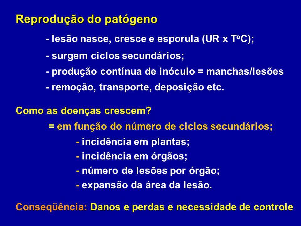 Reprodução do patógeno