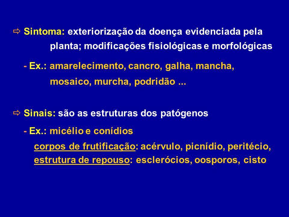  Sintoma: exteriorização da doença evidenciada pela