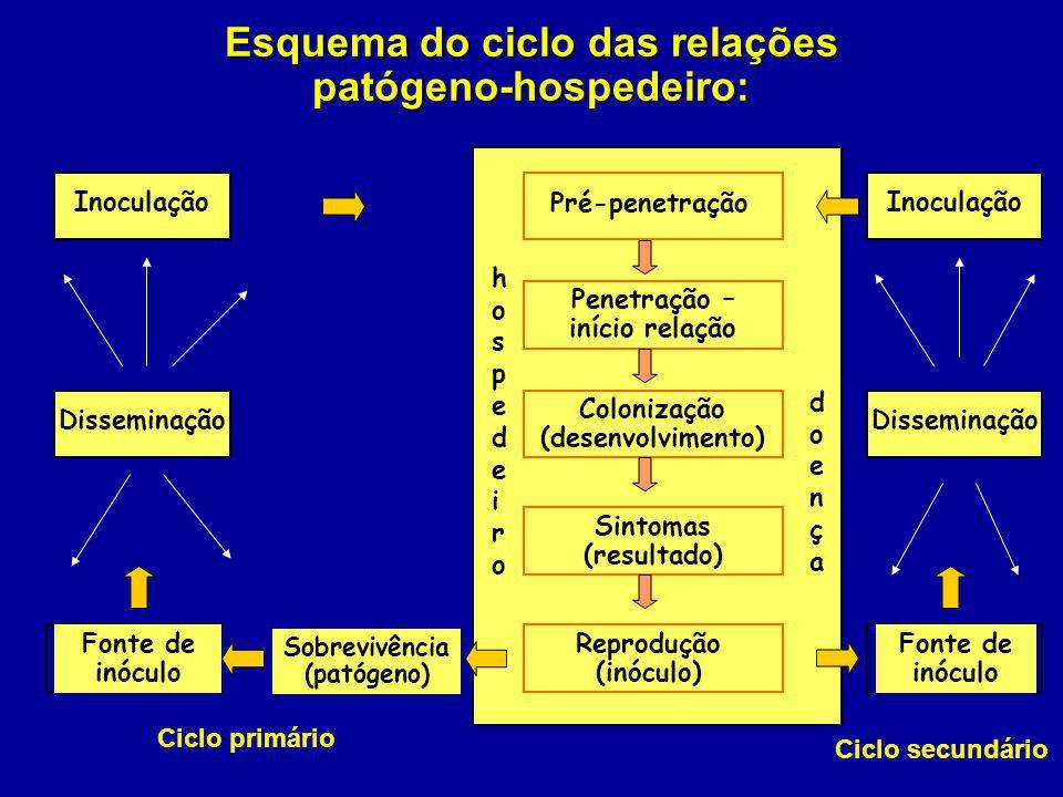 Esquema do ciclo das relações patógeno-hospedeiro: