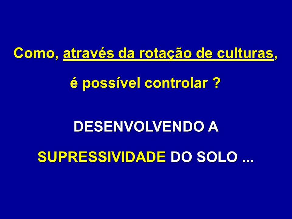 Como, através da rotação de culturas, é possível controlar