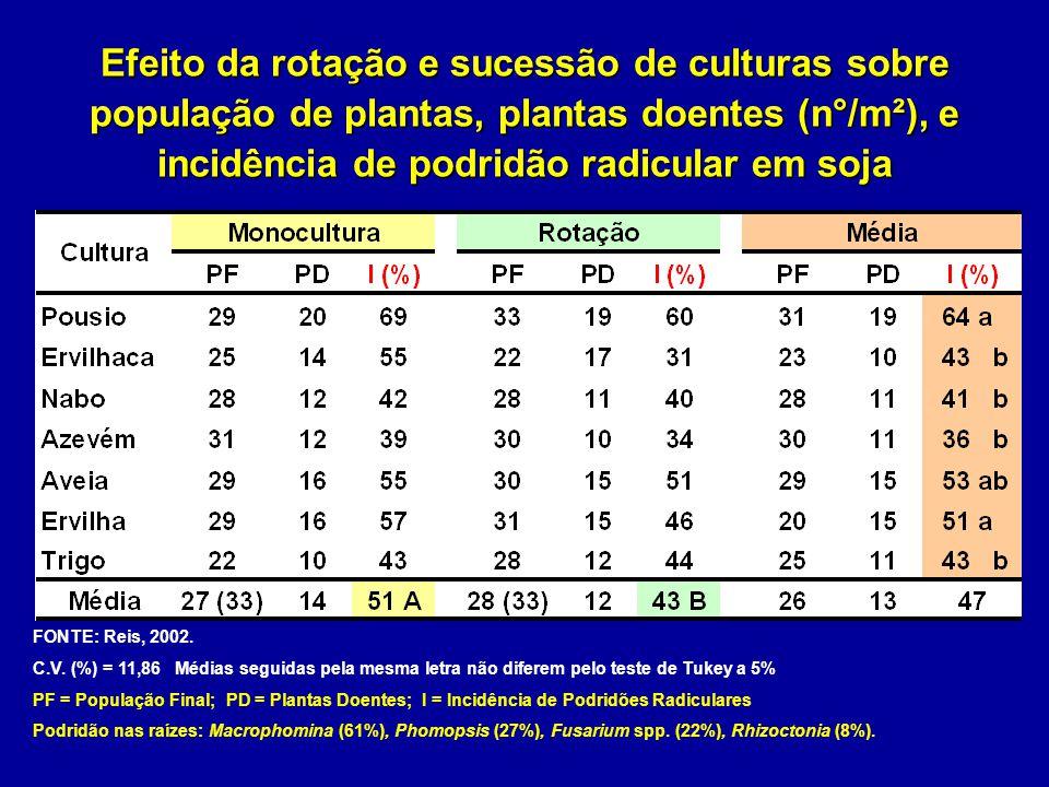 Efeito da rotação e sucessão de culturas sobre população de plantas, plantas doentes (n°/m²), e incidência de podridão radicular em soja