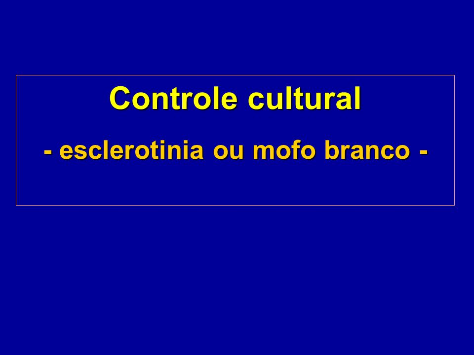 Controle cultural - esclerotinia ou mofo branco -