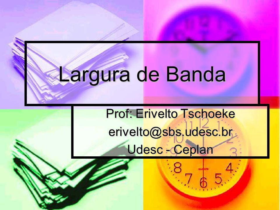 Prof: Erivelto Tschoeke erivelto@sbs.udesc.br Udesc - Ceplan