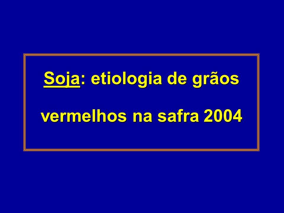 Soja: etiologia de grãos vermelhos na safra 2004