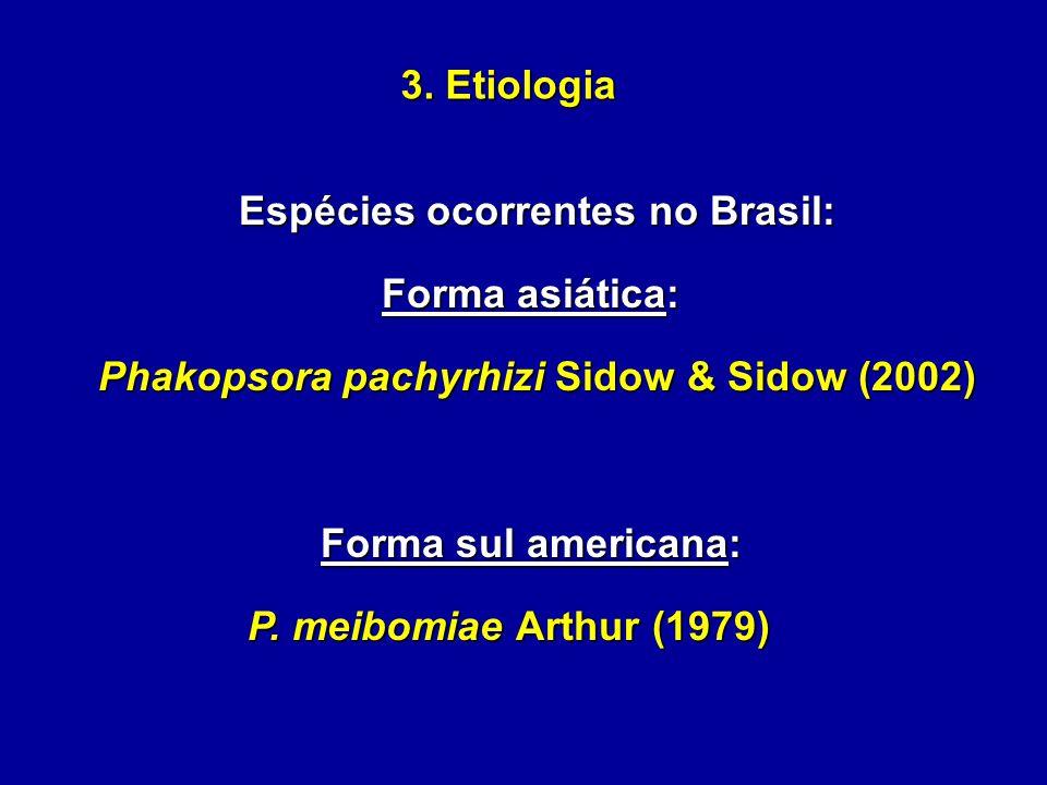Espécies ocorrentes no Brasil: Forma asiática: