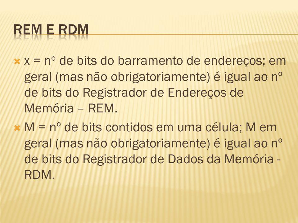 REM e RDM