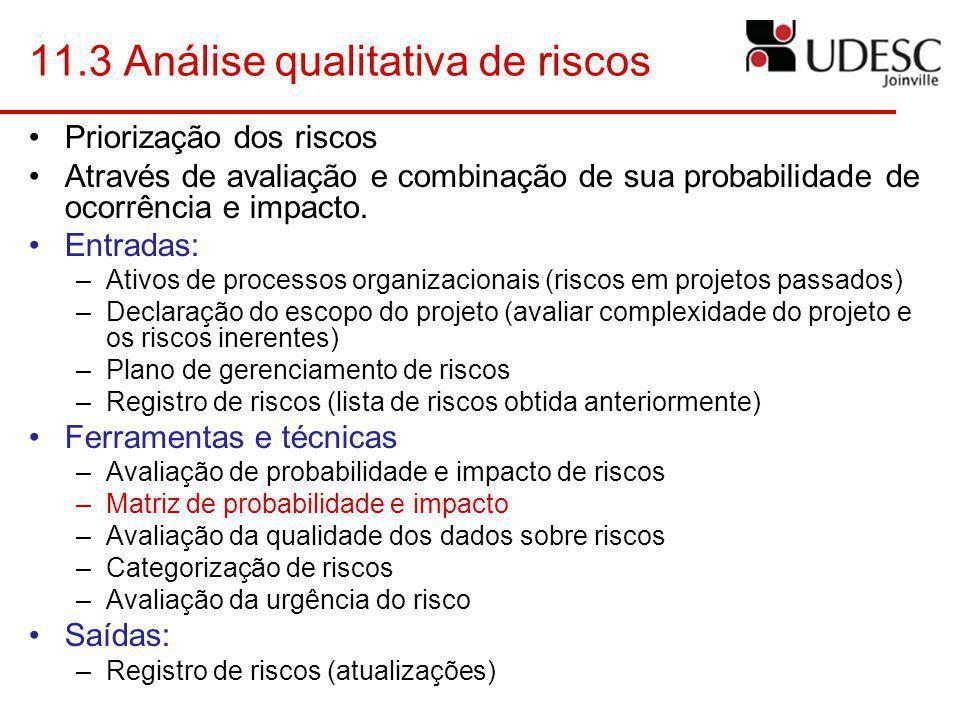11.3 Análise qualitativa de riscos