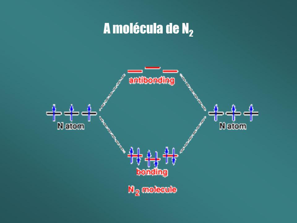 A molécula de N2