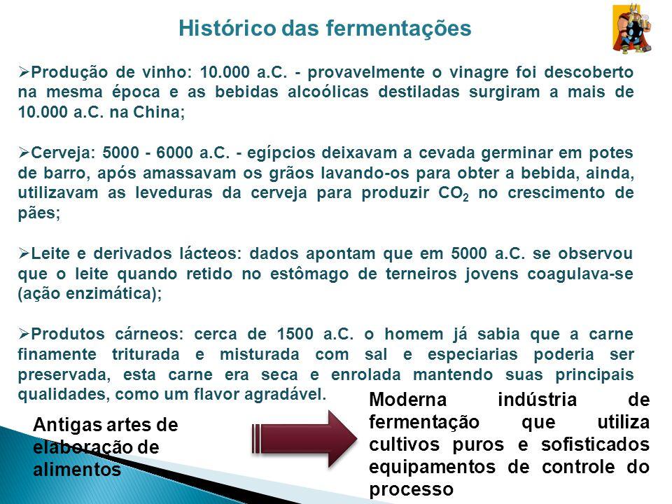 Histórico das fermentações