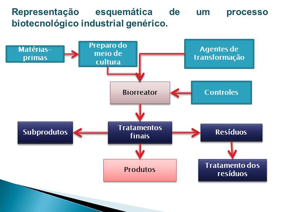 Representação esquemática de um processo biotecnológico industrial genérico.