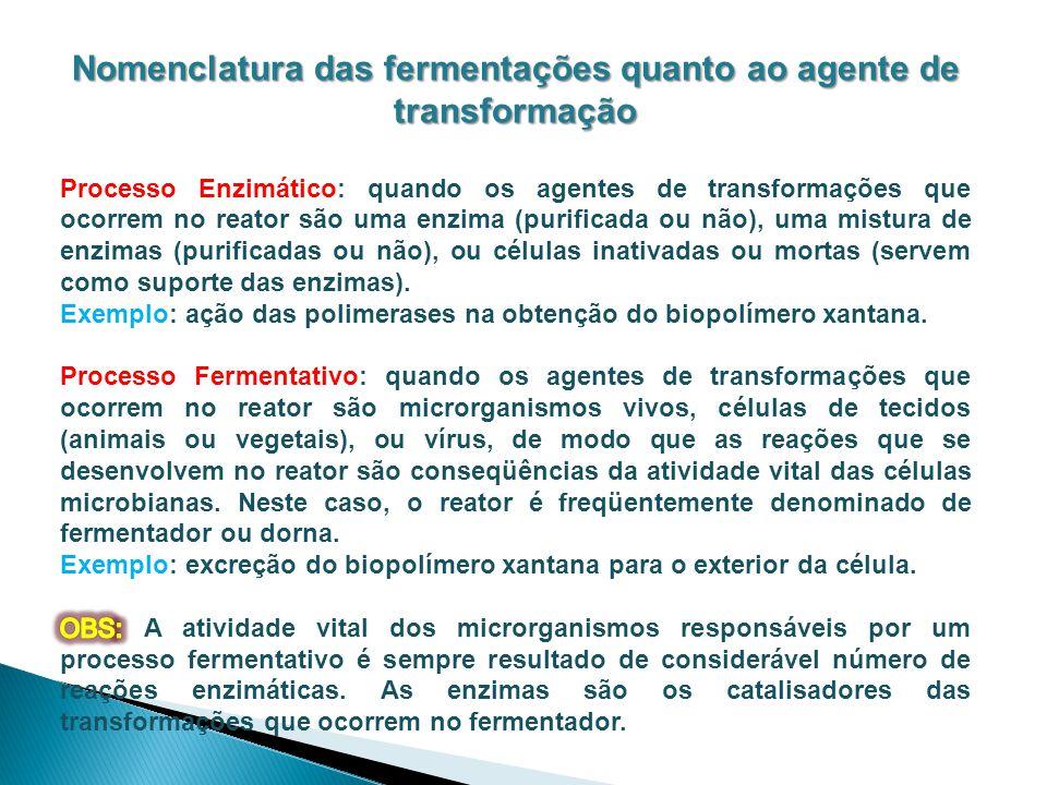 Nomenclatura das fermentações quanto ao agente de transformação