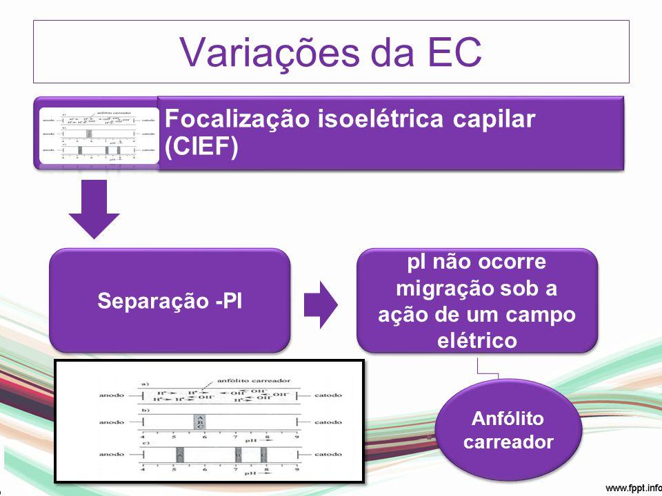 pI não ocorre migração sob a ação de um campo elétrico