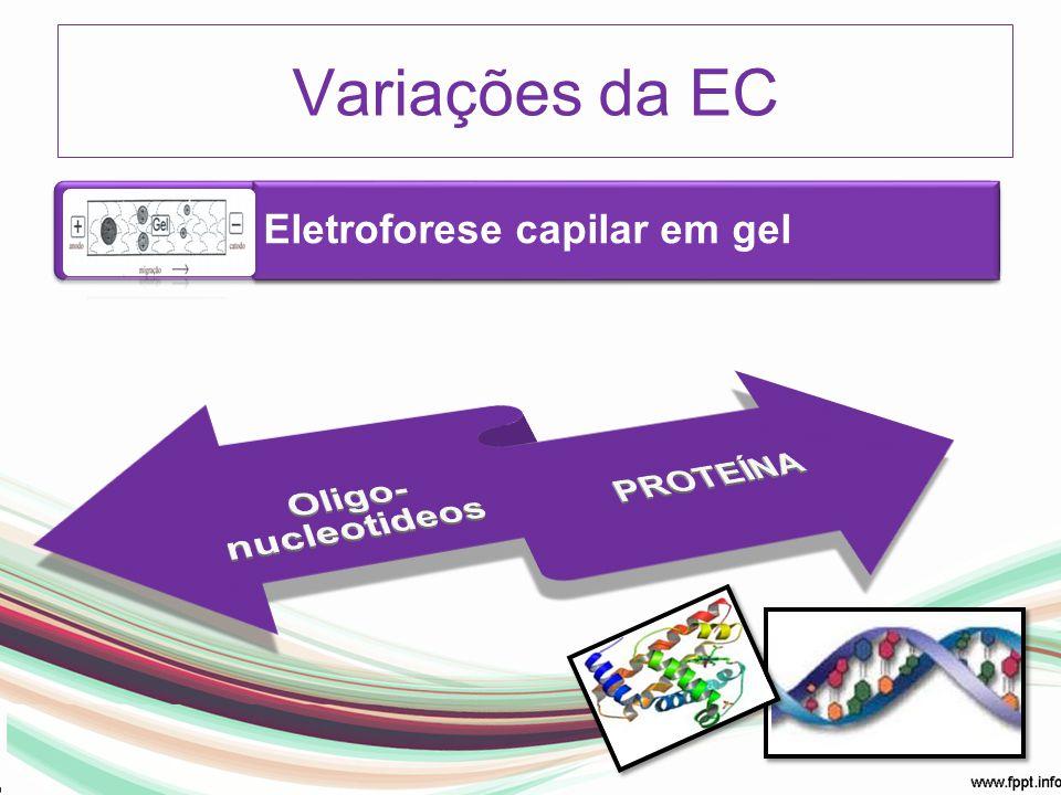 Variações da EC Eletroforese capilar em gel Oligo-nucleotideos