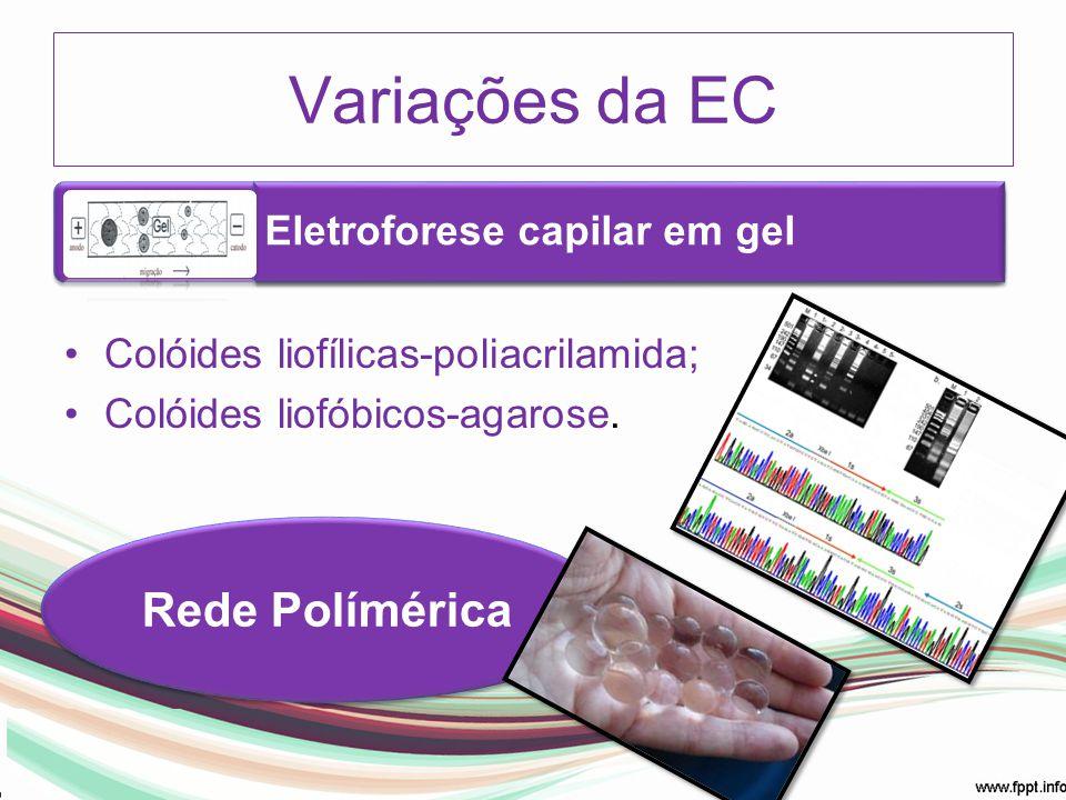 Variações da EC Rede Polímérica Eletroforese capilar em gel