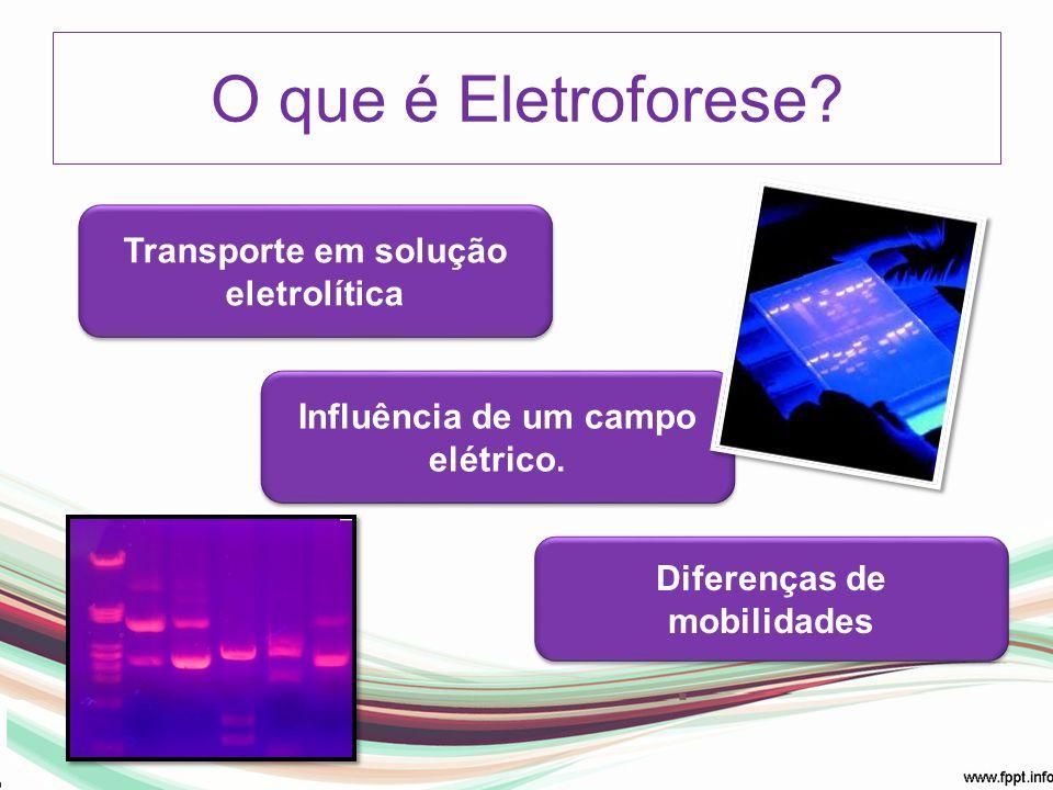 O que é Eletroforese Transporte em solução eletrolítica