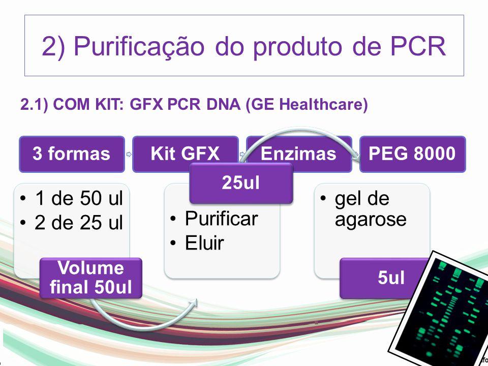 2) Purificação do produto de PCR