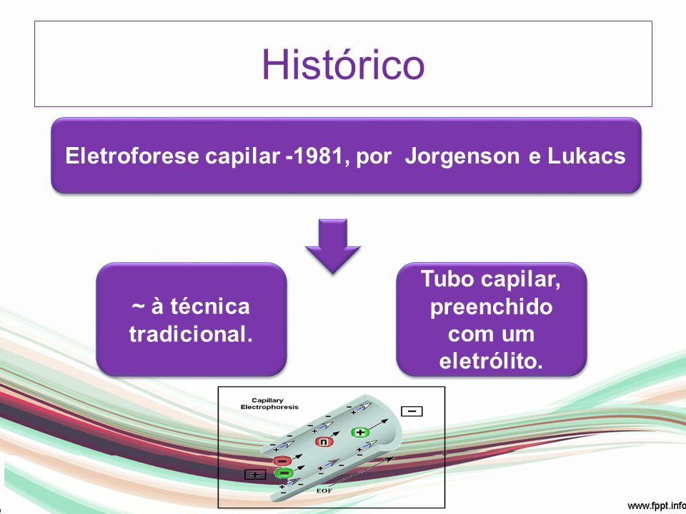 Histórico Eletroforese capilar -1981, por Jorgenson e Lukacs