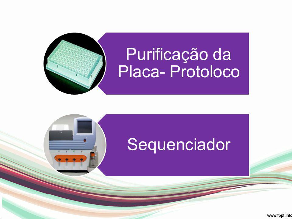 Purificação da Placa- Protoloco