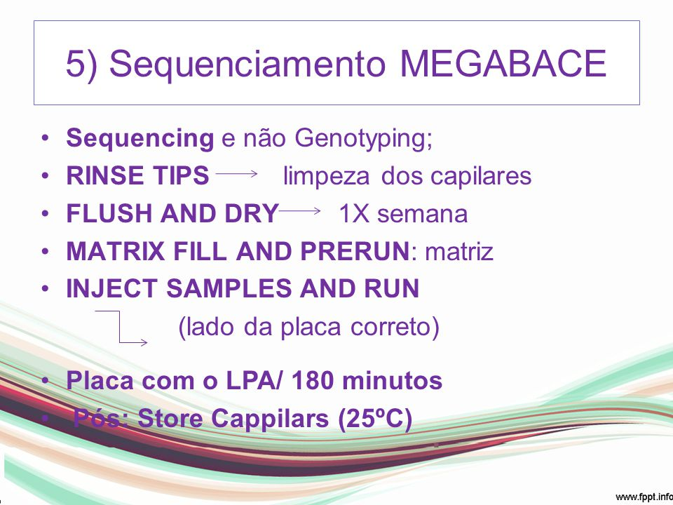 5) Sequenciamento MEGABACE