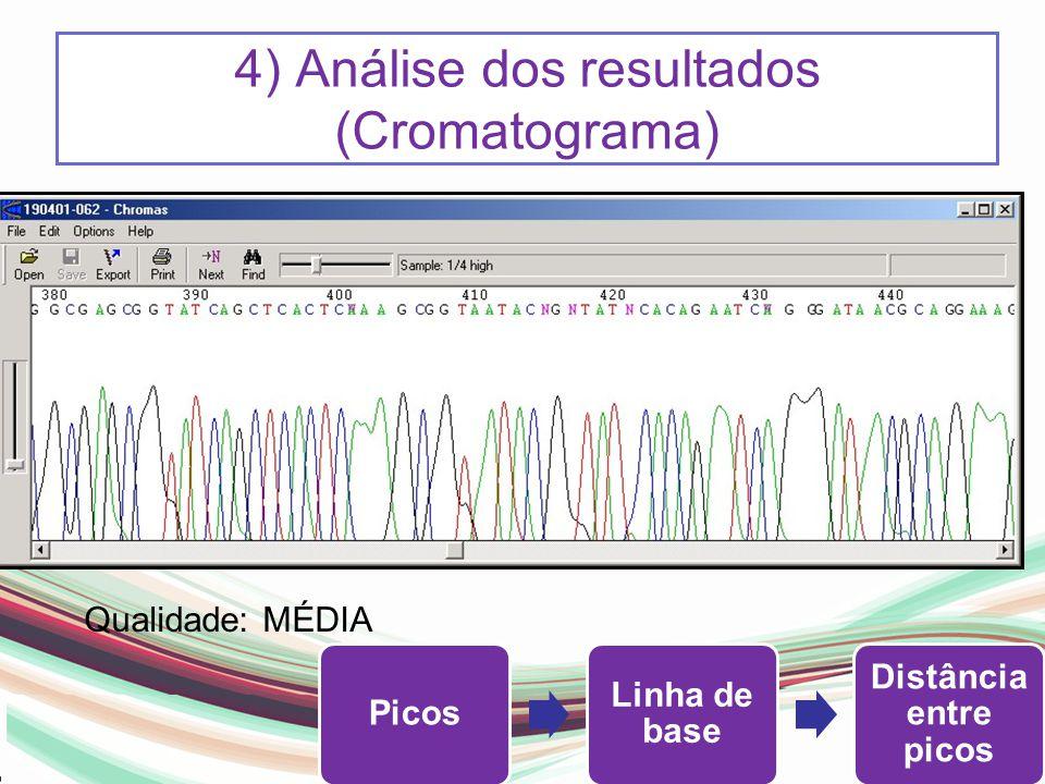 4) Análise dos resultados (Cromatograma)