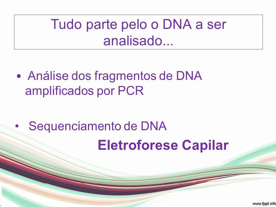 Tudo parte pelo o DNA a ser analisado...