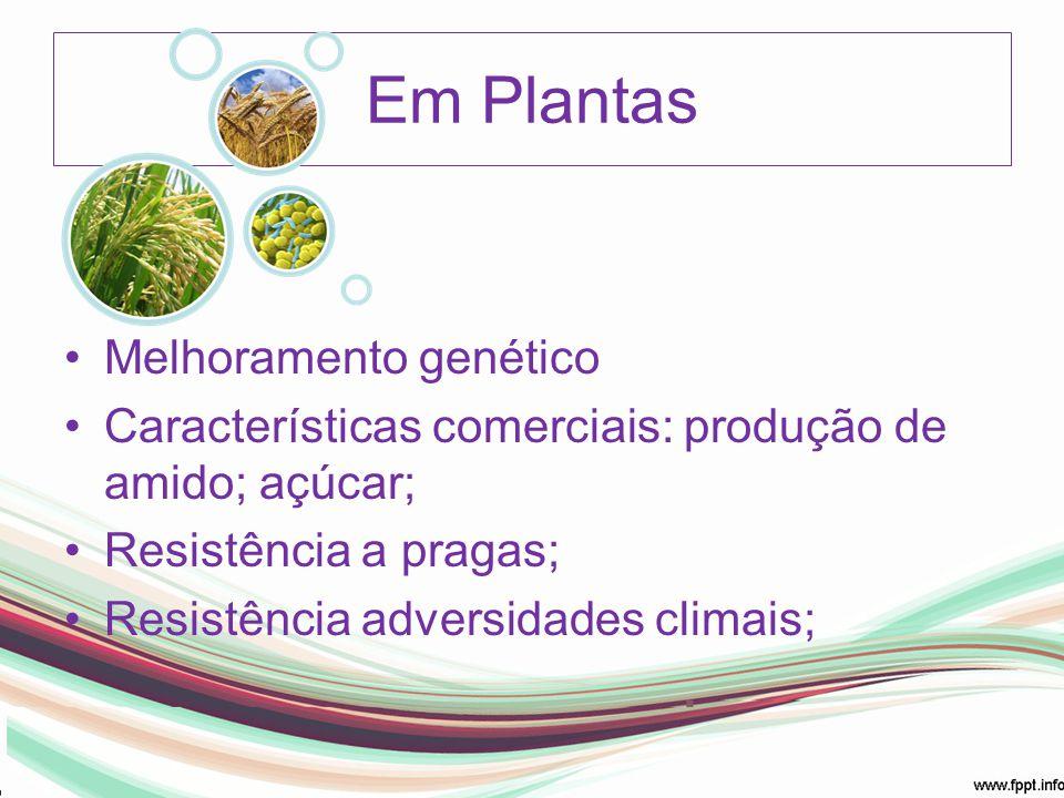 Em Plantas Melhoramento genético