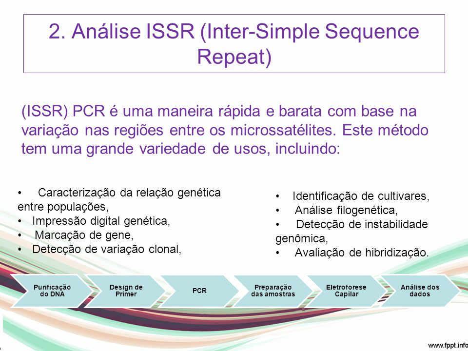 2. Análise ISSR (Inter-Simple Sequence Repeat)