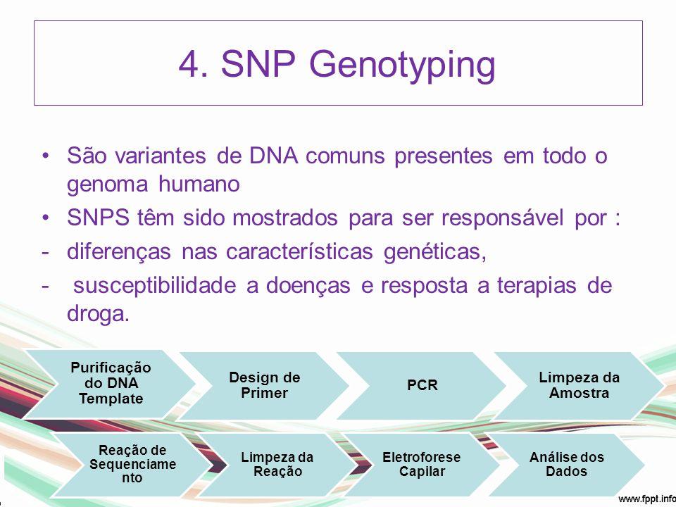 Purificação do DNA Template Reação de Sequenciamento