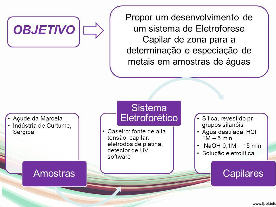 Sistema Eletroforético