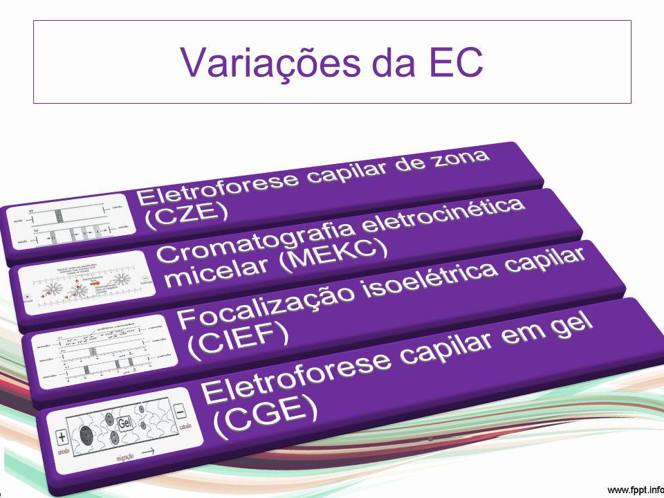 Variações da EC Eletroforese capilar de zona (CZE)