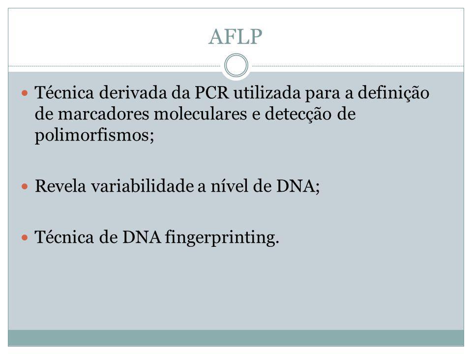 AFLP Técnica derivada da PCR utilizada para a definição de marcadores moleculares e detecção de polimorfismos;
