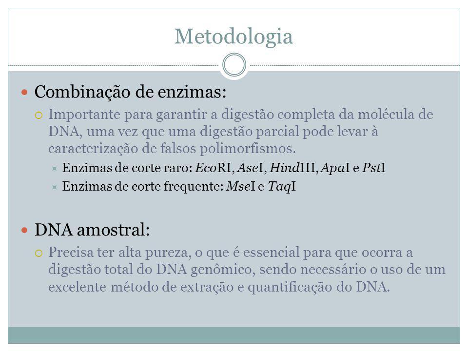 Metodologia Combinação de enzimas: DNA amostral: