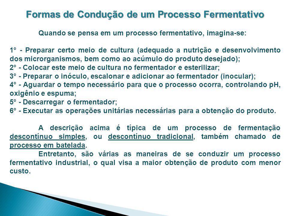 Formas de Condução de um Processo Fermentativo