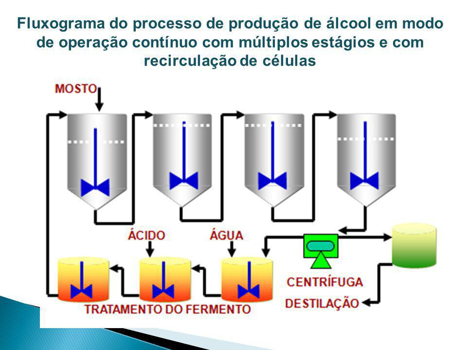 Fluxograma do processo de produção de álcool em modo de operação contínuo com múltiplos estágios e com recirculação de células