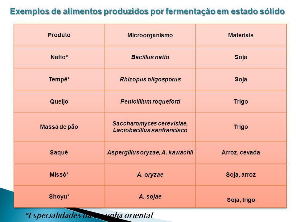 Exemplos de alimentos produzidos por fermentação em estado sólido