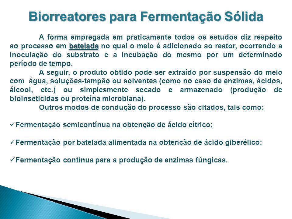 Biorreatores para Fermentação Sólida