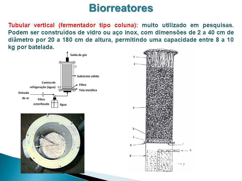 Biorreatores
