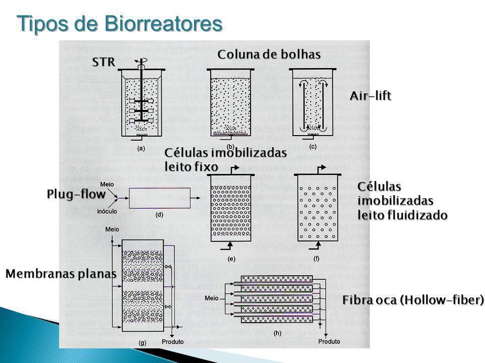 Tipos de Biorreatores Coluna de bolhas STR Air-lift