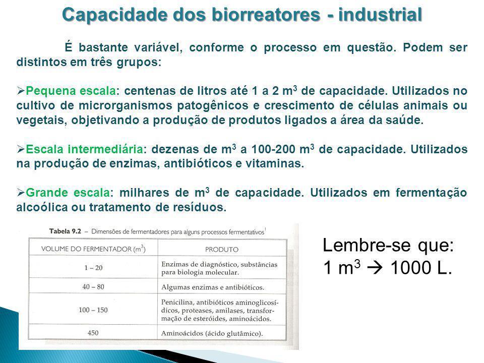 Capacidade dos biorreatores - industrial