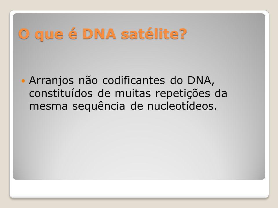O que é DNA satélite.
