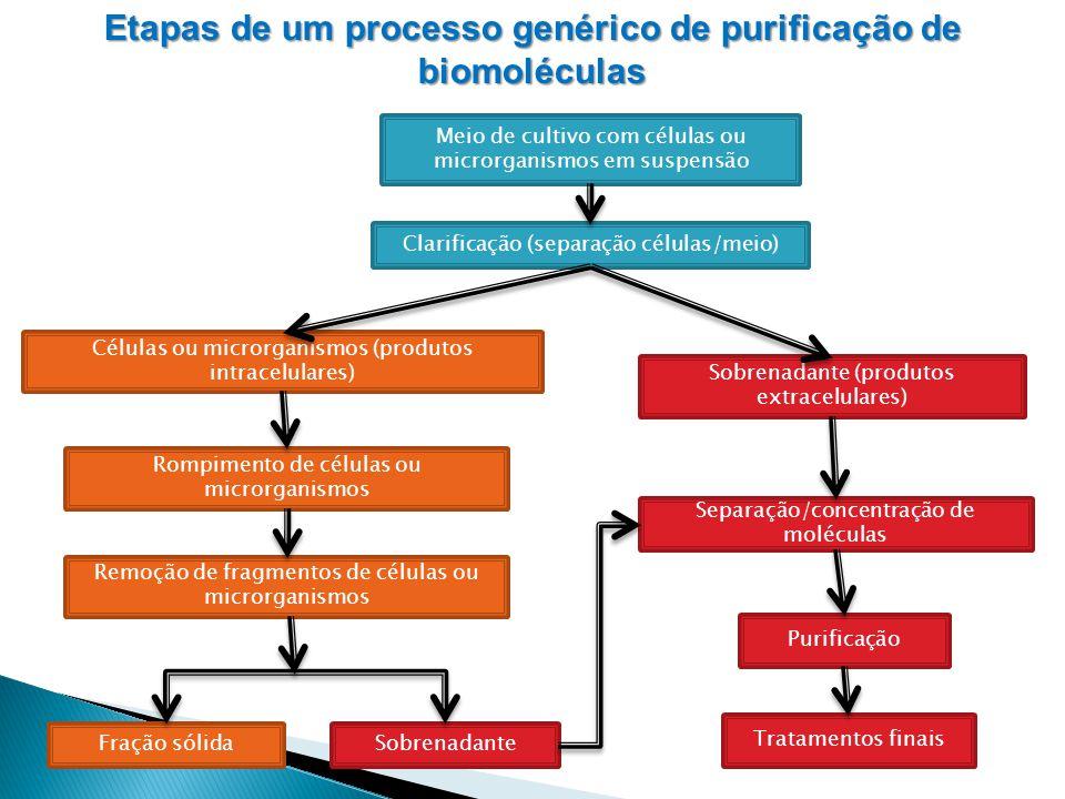Etapas de um processo genérico de purificação de biomoléculas