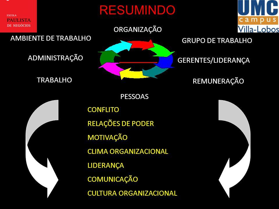 RESUMINDO ORGANIZAÇÃO AMBIENTE DE TRABALHO GRUPO DE TRABALHO