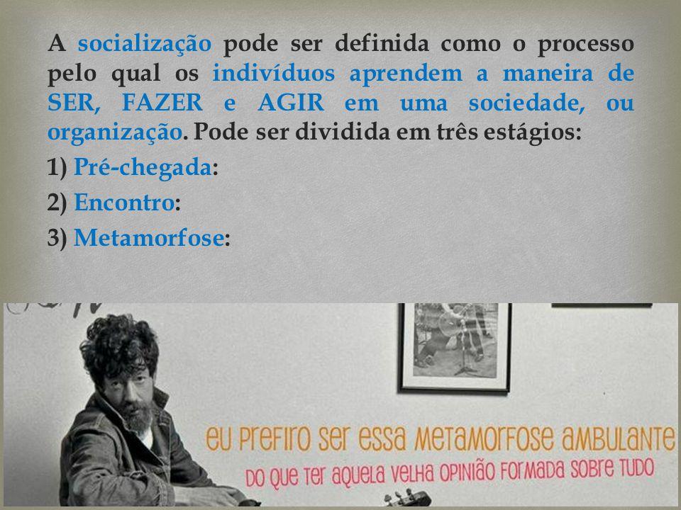 A socialização pode ser definida como o processo pelo qual os indivíduos aprendem a maneira de SER, FAZER e AGIR em uma sociedade, ou organização.