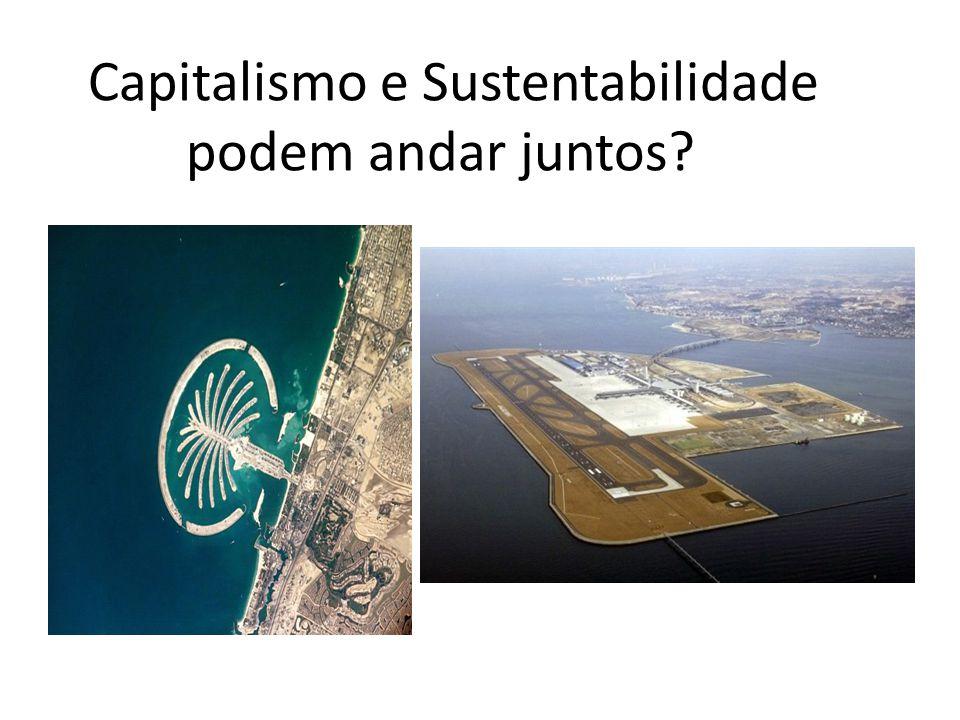 Capitalismo e Sustentabilidade podem andar juntos