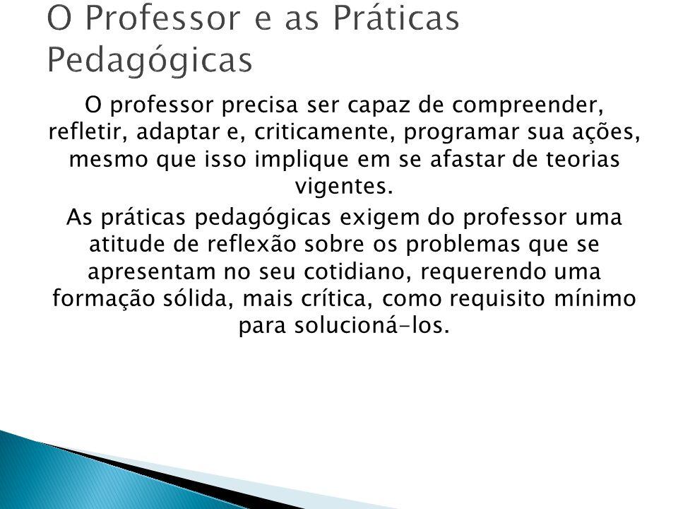 O Professor e as Práticas Pedagógicas